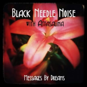 Black Needle Noise 'Messages By Dreams'