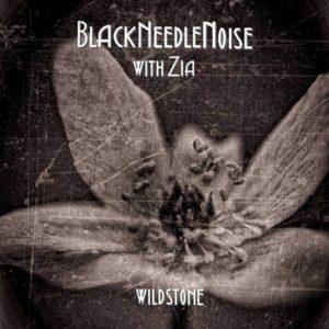 Black Needle Noise 'Wildstone'